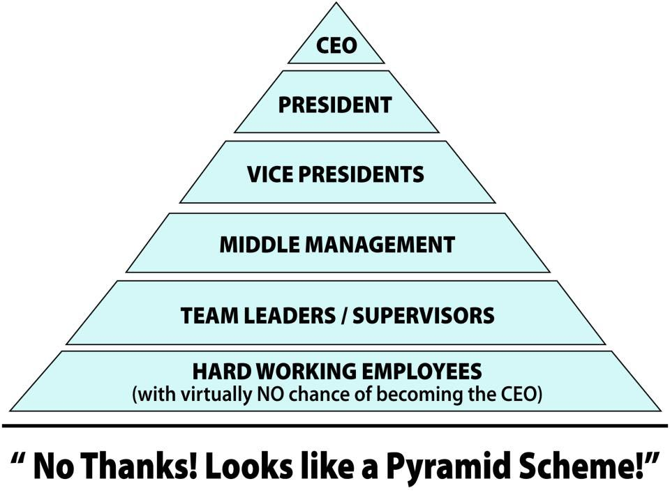 MLM Into the Spotlight real pyramid scheme